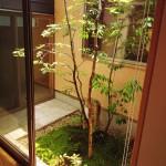 坪庭、苔庭、雑木の庭