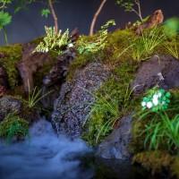 自然風の庭、軽トラガーデン